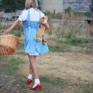 Other - Dorthy Costume
